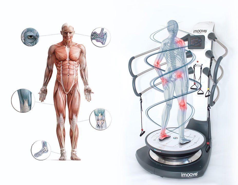Physiologie-de-l-equilibre